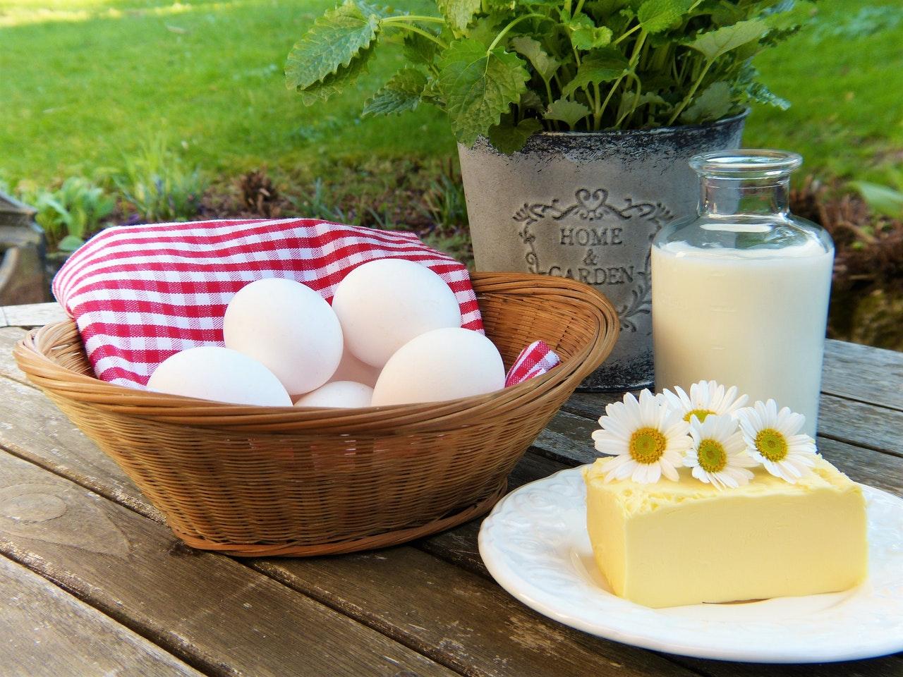 no dairy products in paleo diet